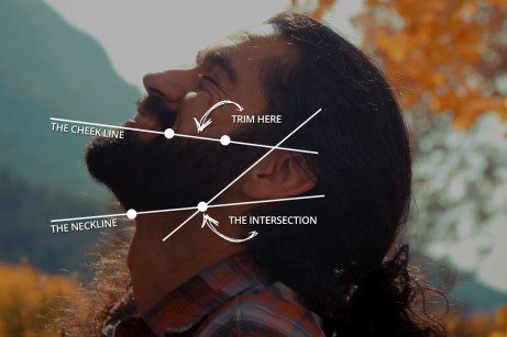 beard-diagram